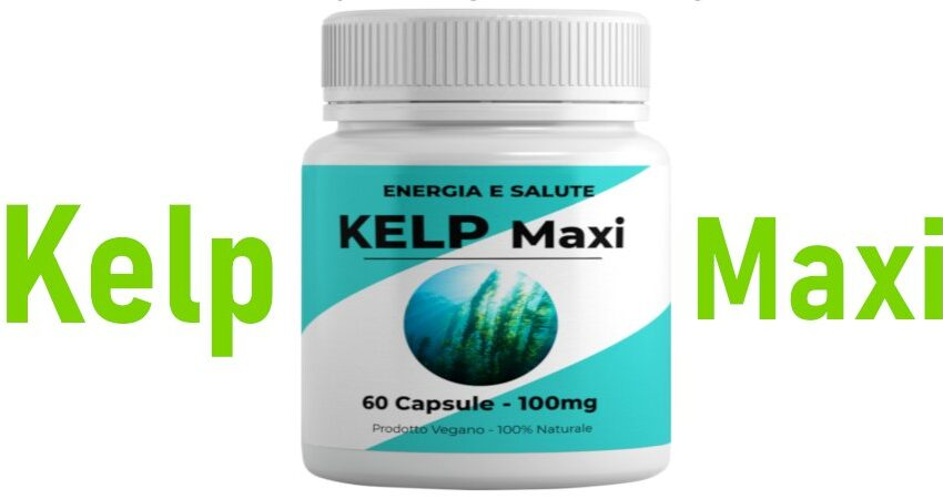 kelp maxi recensione